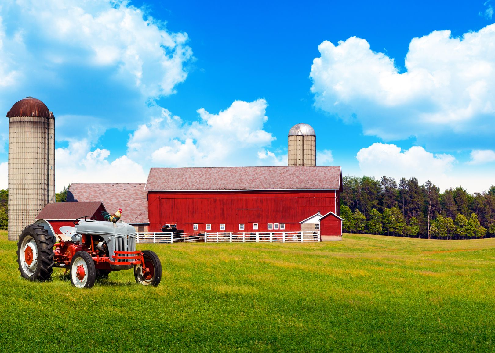 Austin, TX. Farm & Ranch Insurance